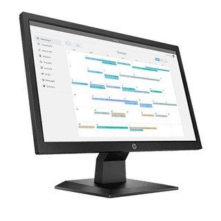 HP P204v 19.5in TN HD+
